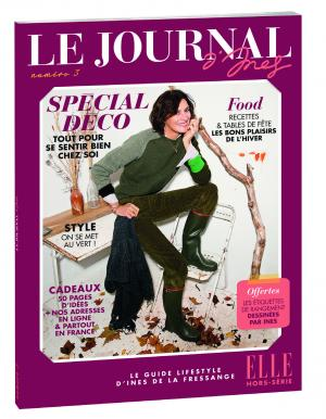 Le Journal D'Ines #3